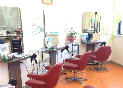 Hair Cut Wiz 新座 (縮毛矯正専門店 クセストパーR)